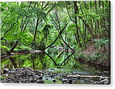 Hitchcock Creek Acrylic Print