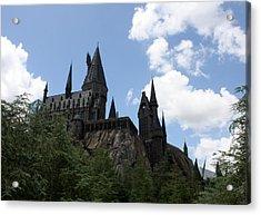 Hogwarts Castle Acrylic Print by David Nicholls