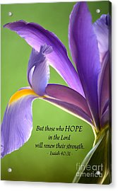Hope Acrylic Print by Deb Halloran