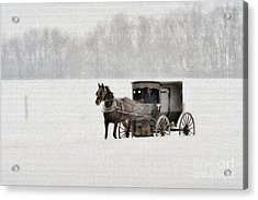 Horse And Buggy In Snow Storm Acrylic Print by Dan Friend