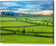 Horse Country Acrylic Print by Alexey Stiop