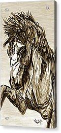 Horse Twins II Acrylic Print