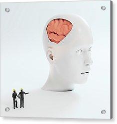 Human Psychology Acrylic Print