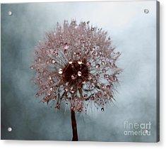 I Promise Acrylic Print by Krissy Katsimbras
