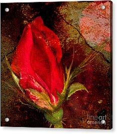 Impressionistic Rose Acrylic Print
