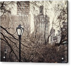 In The Shadow Of The Upper East Side  Acrylic Print by Lisa Russo