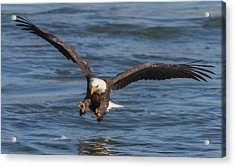 Incoming  Acrylic Print by Glenn Lawrence