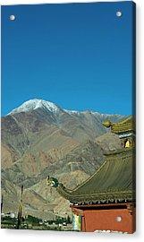 India, Ladakh, Leh, Shanti Stupa Acrylic Print by Anthony Asael