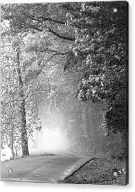 Into The Fog Acrylic Print by Andrew Soundarajan