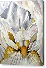 Into The Iris Acrylic Print by Alfred Ng