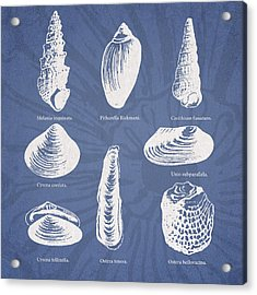 Invertebrates Acrylic Print by Aged Pixel