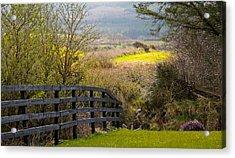 Irish Countryside In Spring Acrylic Print