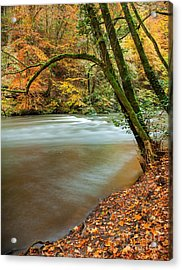 Irrel Falls Acrylic Print