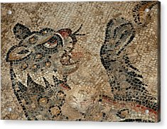 Israel, Lower Galilee, Floor Mosaic Acrylic Print by Ellen Clark