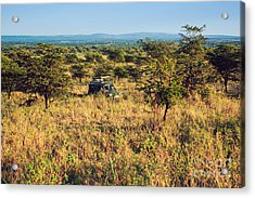 Jeep With Tourists On Safari In Serengeti. Tanzania. Africa. Acrylic Print by Michal Bednarek