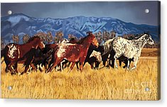 Acrylic Print featuring the painting Joe's Horses by Tim Gilliland