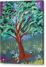 Johnny Appleseed Acrylic Print by Randy Ross