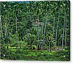 Jungle Life Acrylic Print by Steve Harrington