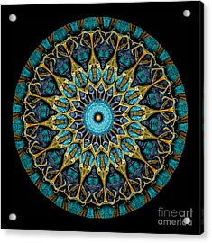 Kaleidoscope Steampunk Series Acrylic Print by Amy Cicconi