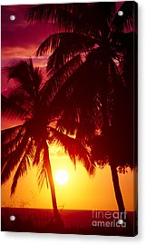 Acrylic Print featuring the photograph Kamaole Nights by Sharon Mau