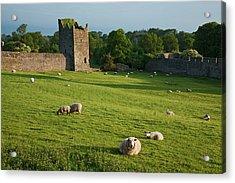 Kells Priory  Count Kilkenny, Ireland Acrylic Print by Carl Bruemmer
