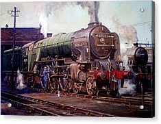 Kenilworth On Shed. Acrylic Print by Mike  Jeffries