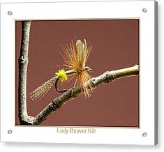 Lady Beaver Kill Acrylic Print by Neal Blizzard
