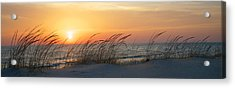 Lake Michigan Sunset Panorama Acrylic Print