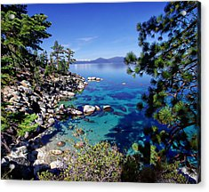 Lake Tahoe Swimming Hole Acrylic Print by Scott McGuire