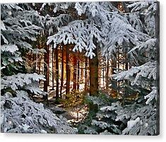 Landscape Art Acrylic Print