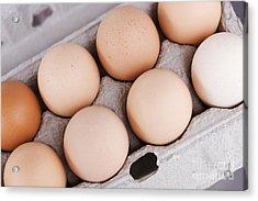 Large Carton Eggs Acrylic Print