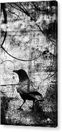 Last Call  Acrylic Print by Jerry Cordeiro