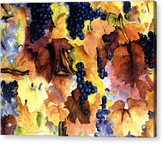 Late Harvest 3 Acrylic Print by Maria Hunt