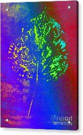 Leaf Imprint  Acrylic Print