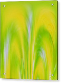 Lemon Lime Acrylic Print by Patricia Kay