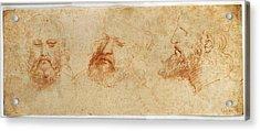 Leonardo Da Vinci, Profile Acrylic Print by Everett
