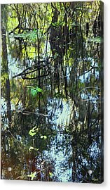 Lettuce Lake Abstract Acrylic Print