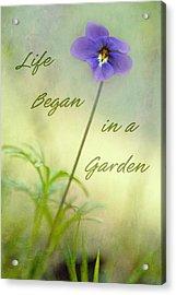 Life Began In A Garden Acrylic Print by Patricia Montgomery