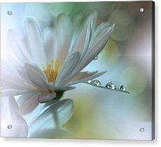 Light Touch... Acrylic Print by Juliana Nan