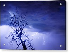 Lightning Tree Silhouette 29 Acrylic Print by James BO  Insogna
