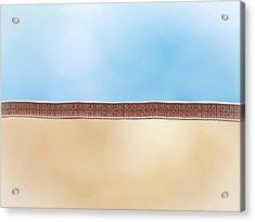 Lipid Membrane Acrylic Print by Maurizio De Angelis