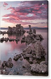 Listen To The Sound Acrylic Print by Jon Glaser
