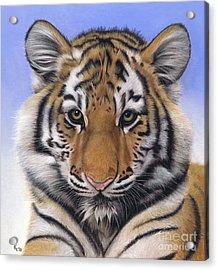 Little Big Cat Acrylic Print