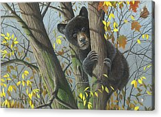Acrylic Print featuring the painting Little Mischief by Mike Brown