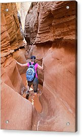 Little Wild Horse Canyon Acrylic Print by Jim West