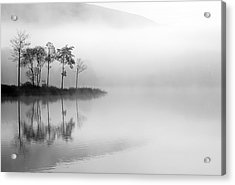 Loch Ard Trees In The Mist Acrylic Print