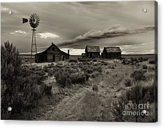 Lonely House On The Prairie Acrylic Print by Mike  Dawson