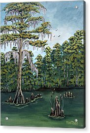 Louisiana Cypress Acrylic Print