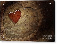 Love Text On  Wooden Background Acrylic Print by Mythja  Photography