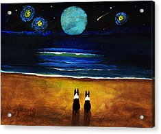 Magical Night Acrylic Print by Todd Young